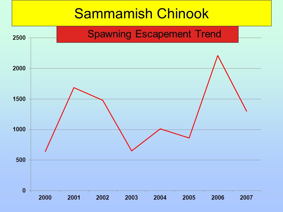 Sammamish Chinook Spawning Escapement Trend