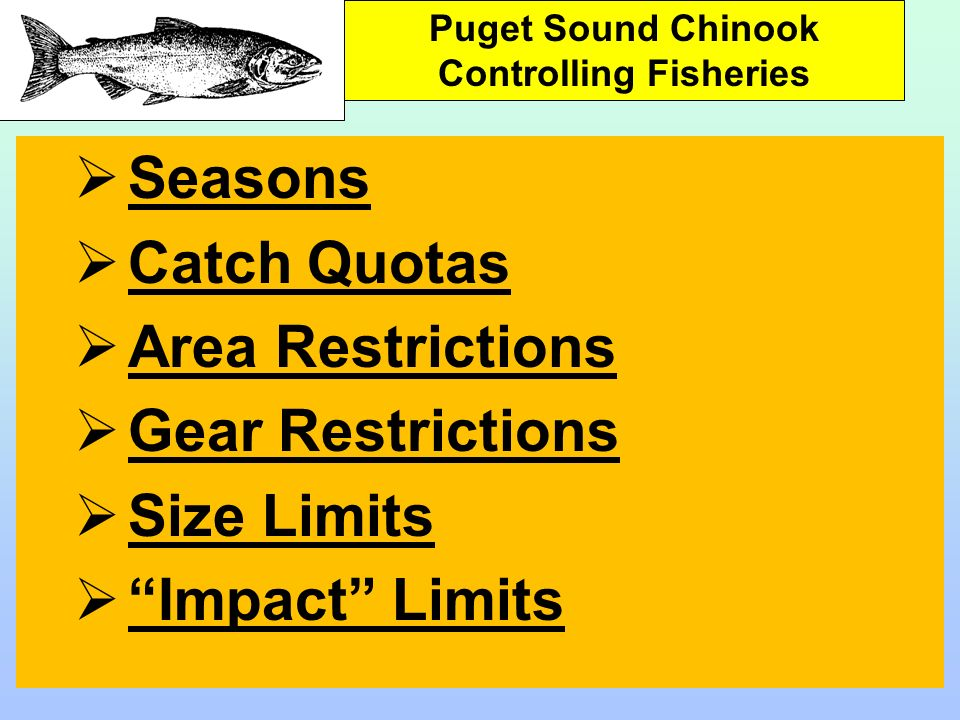 Seasons Catch Quotas Area Restrictions Gear Restrictions Size Limits Impact Limits