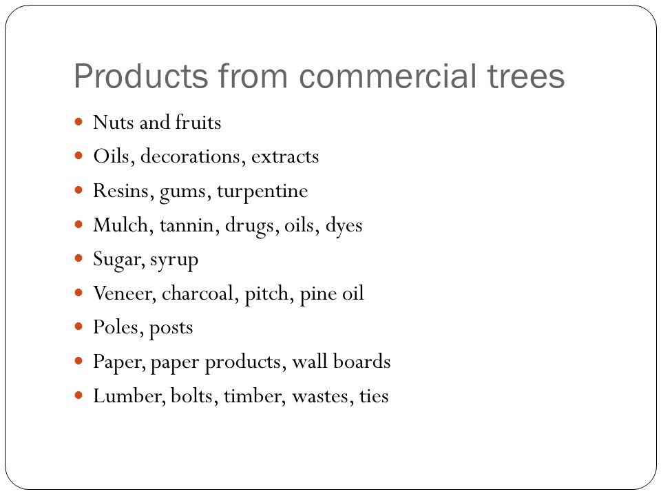 Products from commercial trees Nuts and fruits Oils, decorations, extracts Resins, gums, turpentine Mulch, tannin, drugs, oils, dyes Sugar, syrup Veneer, charcoal, pitch, pine oil Poles, posts Paper, paper products, wall boards Lumber, bolts, timber, wastes, ties