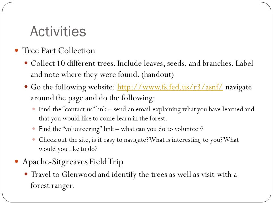 Activities Tree Part Collection Collect 10 different trees.