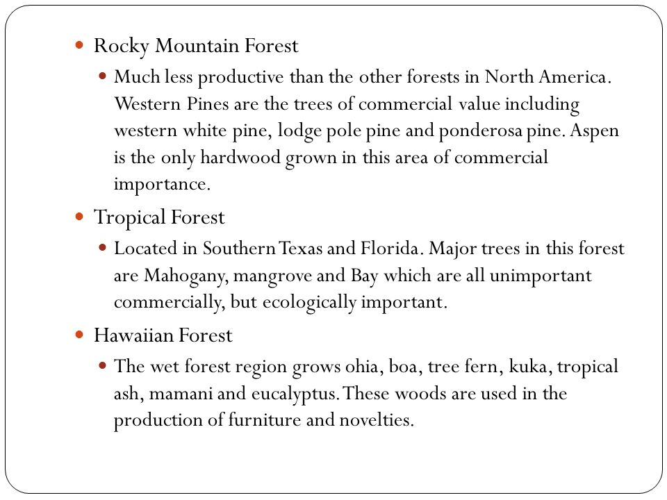 Rocky Mountain Forest Much less productive than the other forests in North America.