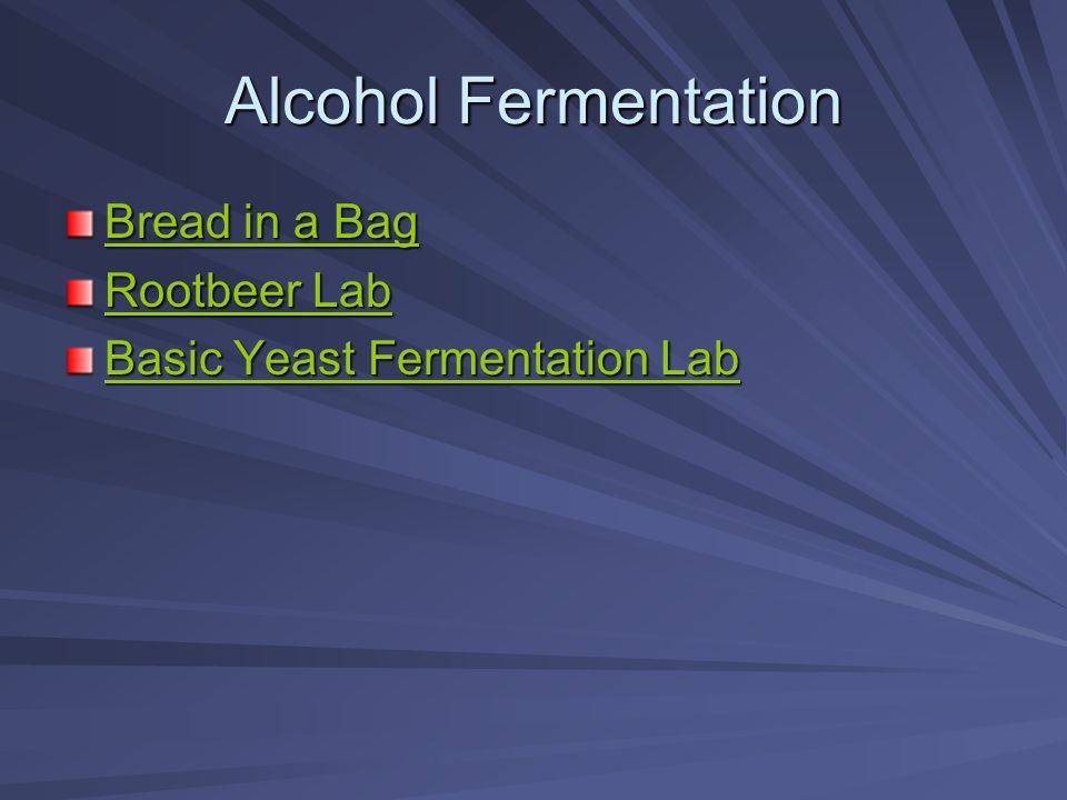 Alcohol Fermentation Bread in a Bag Bread in a Bag Rootbeer Lab Rootbeer Lab Basic Yeast Fermentation Lab Basic Yeast Fermentation Lab