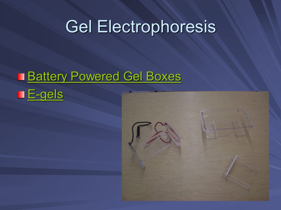 Gel Electrophoresis Battery Powered Gel Boxes Battery Powered Gel Boxes E-gels