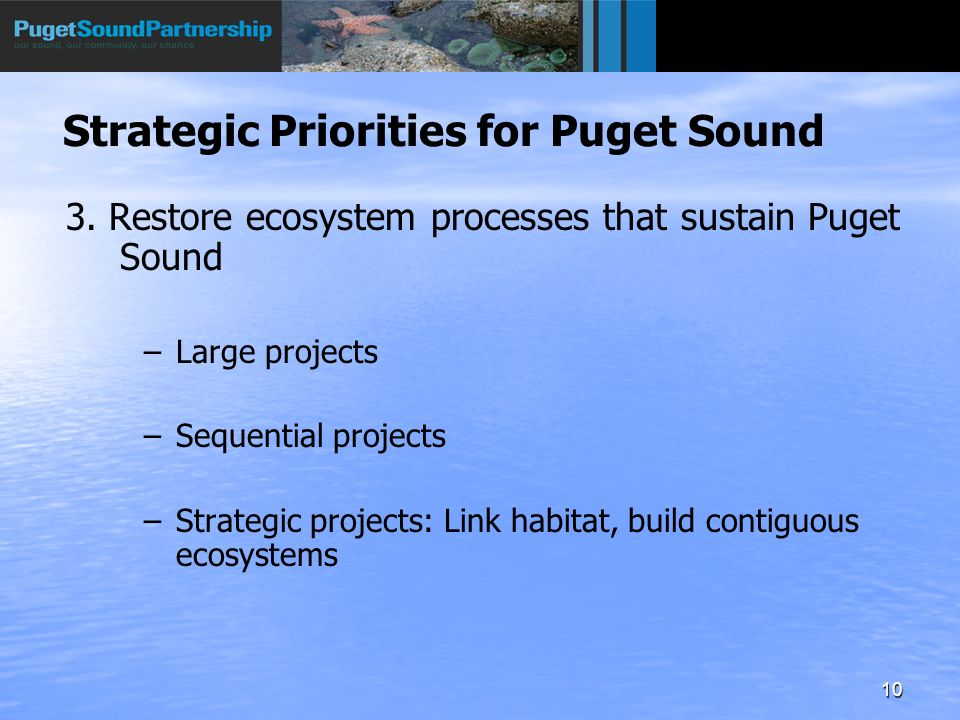 10 3. Restore ecosystem processes that sustain Puget Sound – –Large projects – –Sequential projects – –Strategic projects: Link habitat, build contigu