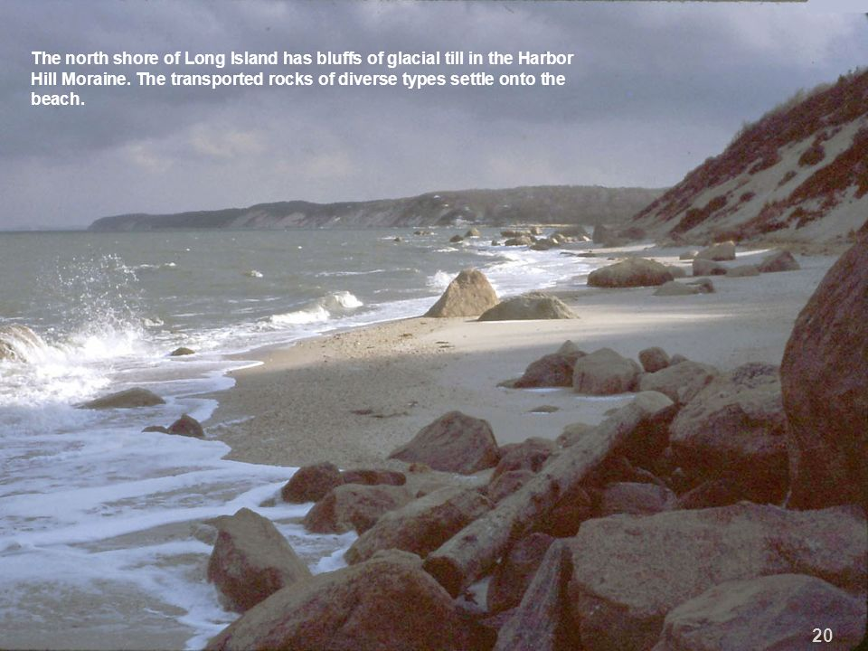 The north shore of Long Island has bluffs of glacial till in the Harbor Hill Moraine. The transported rocks of diverse types settle onto the beach. 20