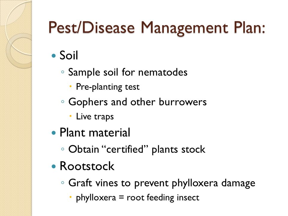 Pest/Disease Management Plan: Soil Sample soil for nematodes Pre-planting test Gophers and other burrowers Live traps Plant material Obtain certified plants stock Rootstock Graft vines to prevent phylloxera damage phylloxera = root feeding insect