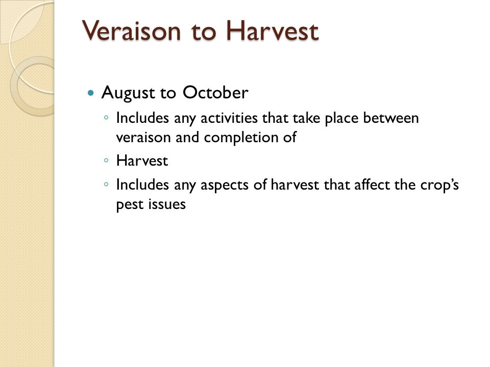 Veraison to Harvest August to October Includes any activities that take place between veraison and completion of Harvest Includes any aspects of harvest that affect the crops pest issues