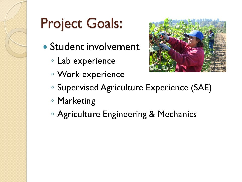Project Goals: Student involvement Lab experience Work experience Supervised Agriculture Experience (SAE) Marketing Agriculture Engineering & Mechanics