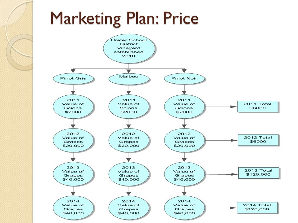 Marketing Plan: Price