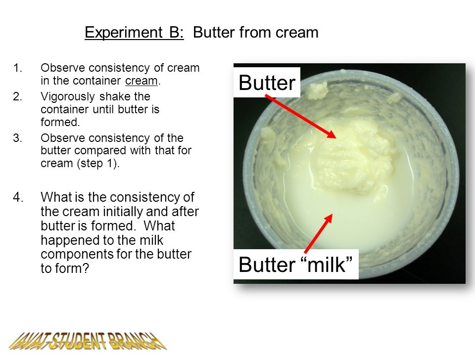 Experiment B: Butter from cream 1.Observe consistency of cream in the container cream. 2.Vigorously shake the container until butter is formed. 3.Obse