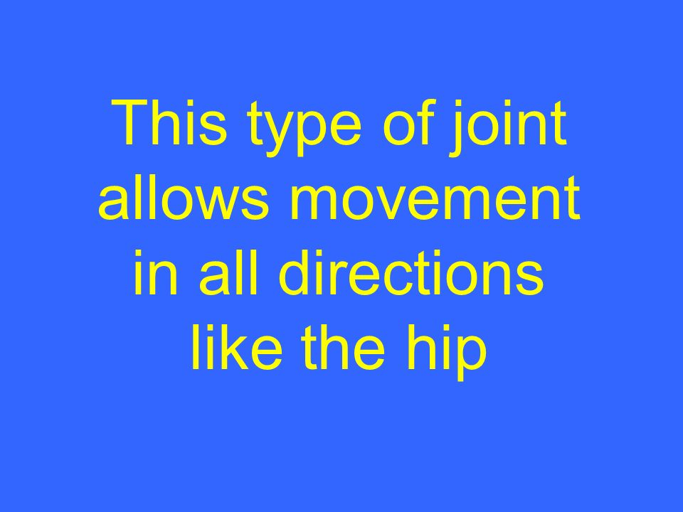This type of joint allows movement in all directions like the hip