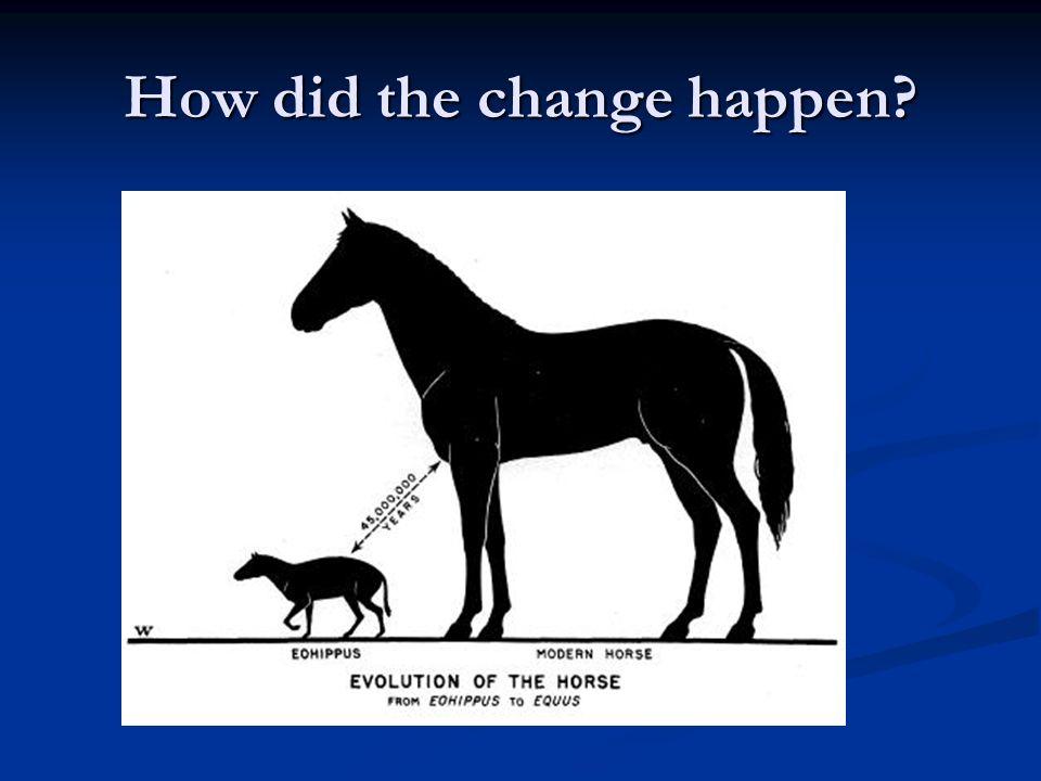How did the change happen?