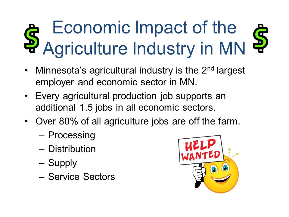 Economic Impact of the Agriculture Industry in MN Minnesotas agricultural industry is the 2 nd largest employer and economic sector in MN.