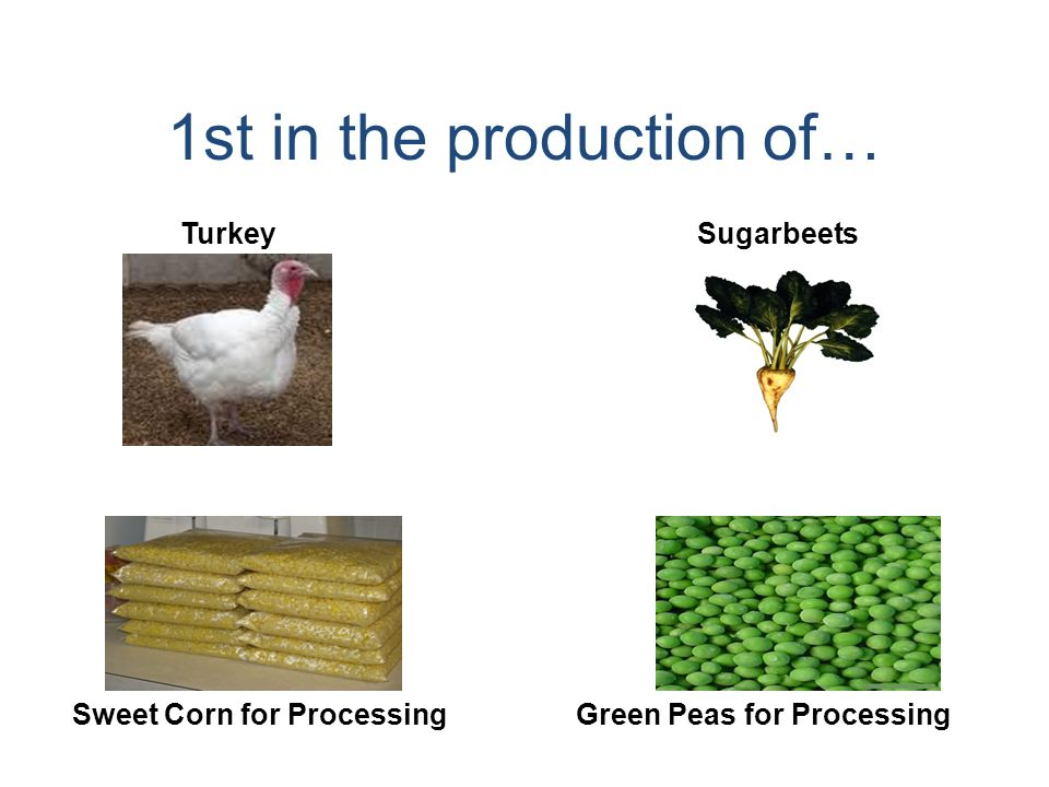 1st in the production of… Turkey Sweet Corn for Processing Sugarbeets Green Peas for Processing