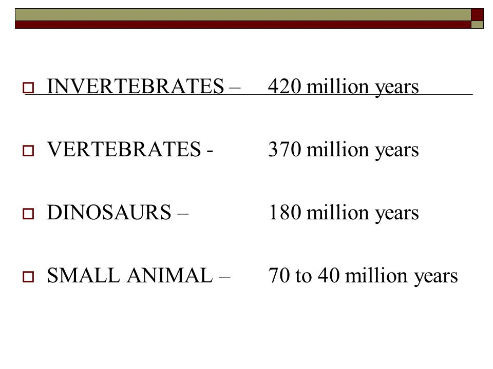 INVERTEBRATES – 420 million years VERTEBRATES million years DINOSAURS – 180 million years SMALL ANIMAL – 70 to 40 million years
