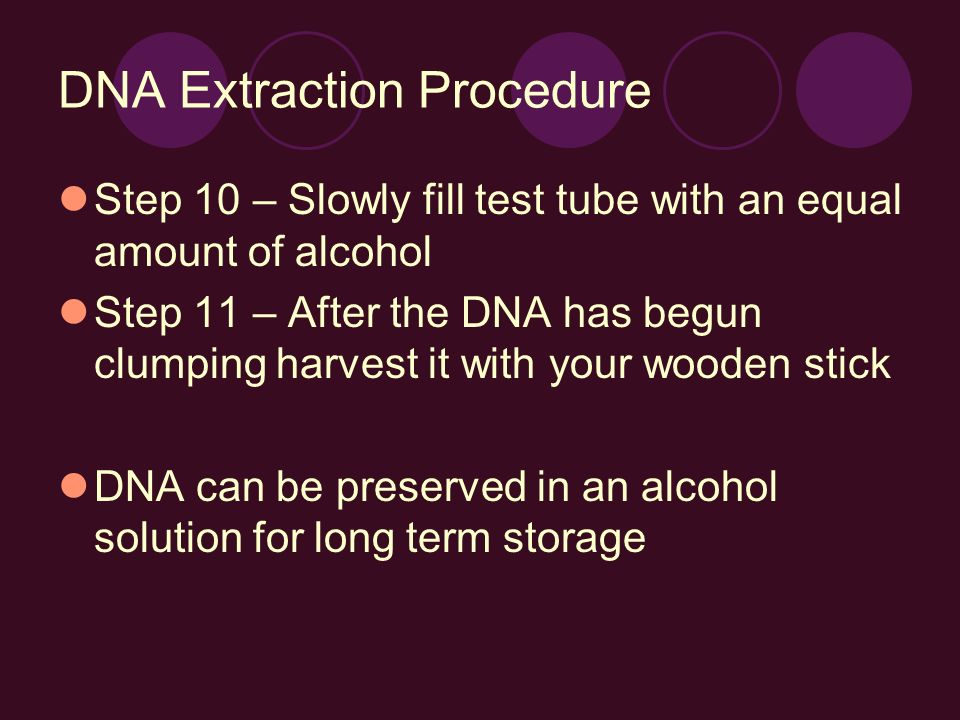 DNA Extraction Procedure Step 10 – Slowly fill test tube with an equal amount of alcohol Step 11 – After the DNA has begun clumping harvest it with yo