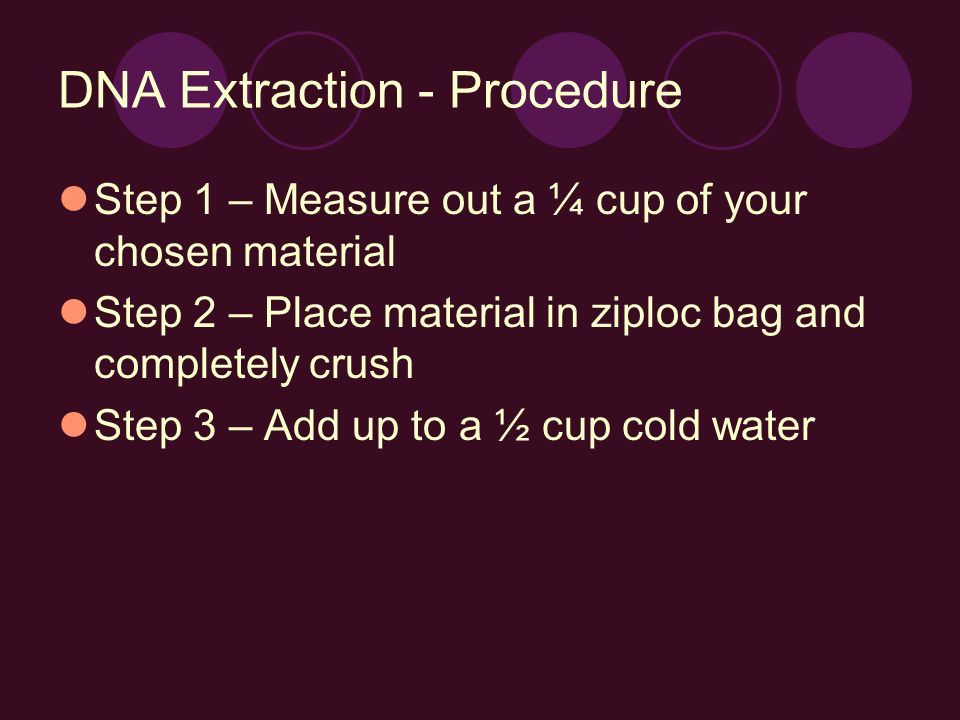 DNA Extraction - Procedure Step 1 – Measure out a ¼ cup of your chosen material Step 2 – Place material in ziploc bag and completely crush Step 3 – Add up to a ½ cup cold water
