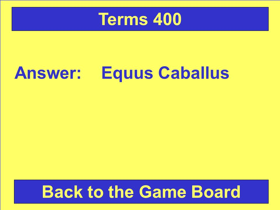 Answer: Equus Caballus Back to the Game Board Terms 400