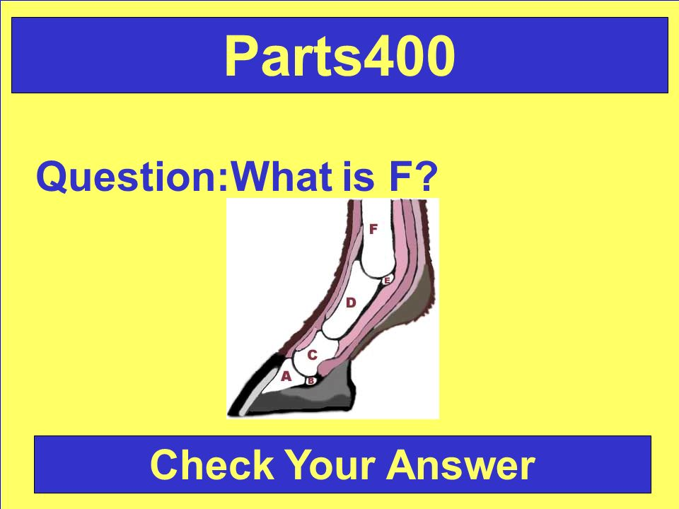 Question:What is F Check Your Answer Parts400