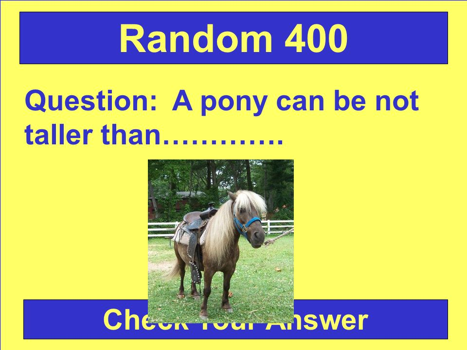 Question: A pony can be not taller than…………. Check Your Answer Random 400