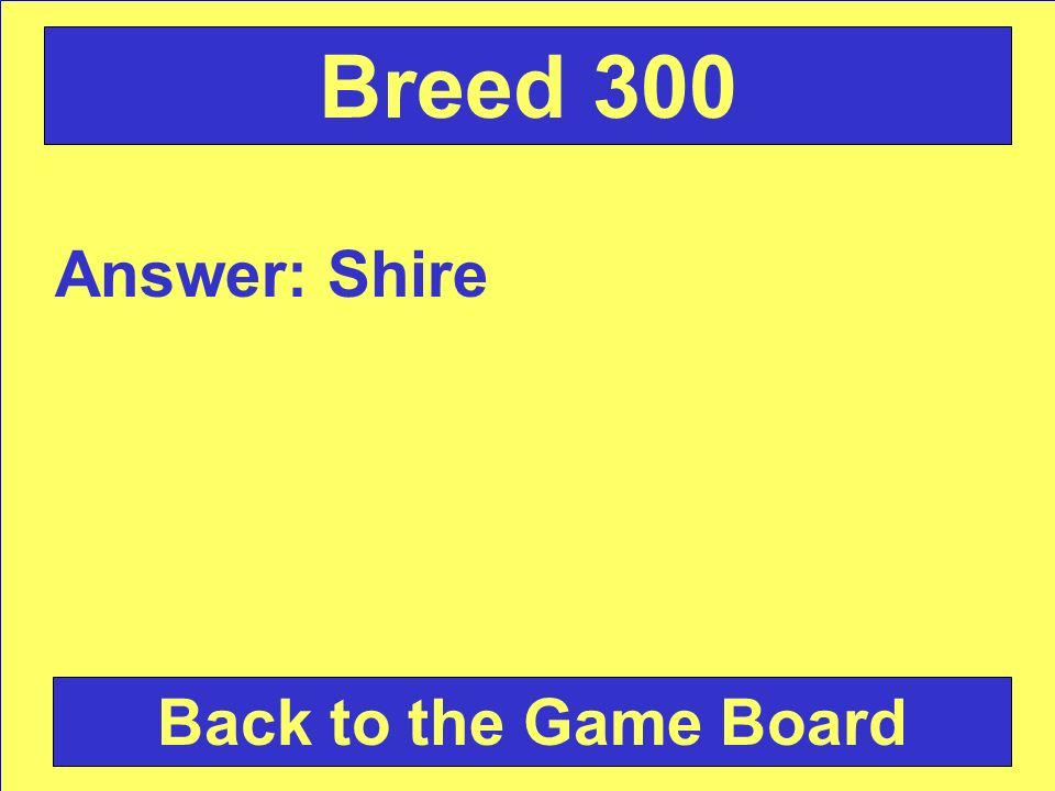 Answer: Shire Back to the Game Board Breed 300