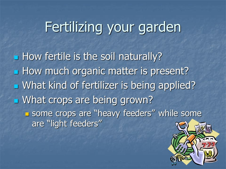 Fertilizing your garden How fertile is the soil naturally.