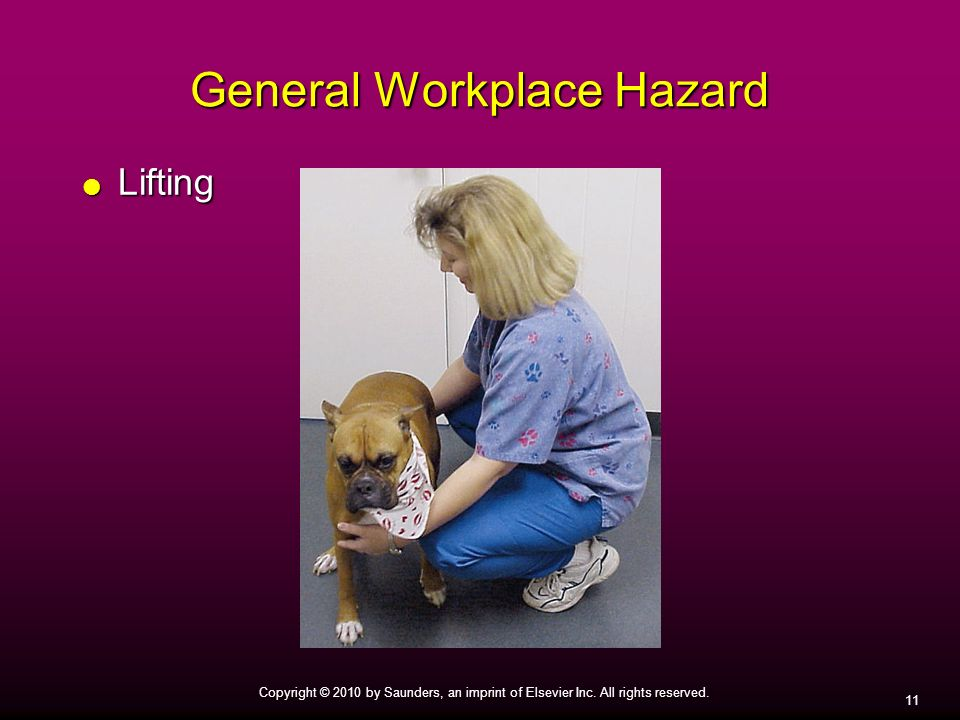 11 Copyright © 2010 by Saunders, an imprint of Elsevier Inc. All rights reserved. General Workplace Hazard Lifting Lifting
