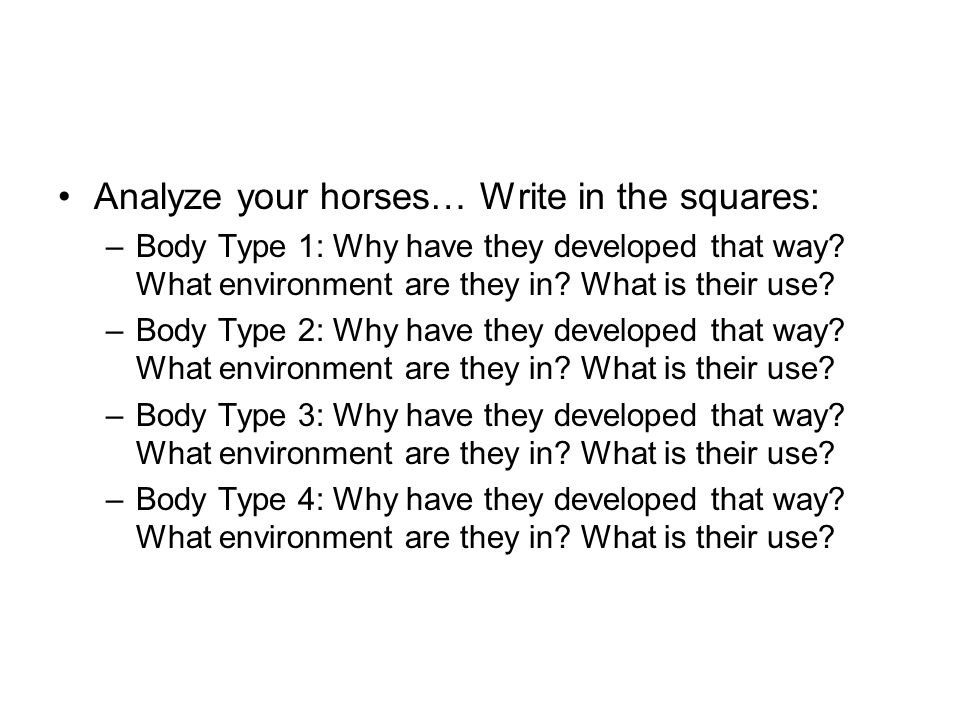 Analyze your horses… Write in the squares: –Body Type 1: Why have they developed that way? What environment are they in? What is their use? –Body Type