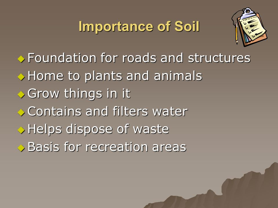 Importance of Soil Foundation for roads and structures Foundation for roads and structures Home to plants and animals Home to plants and animals Grow