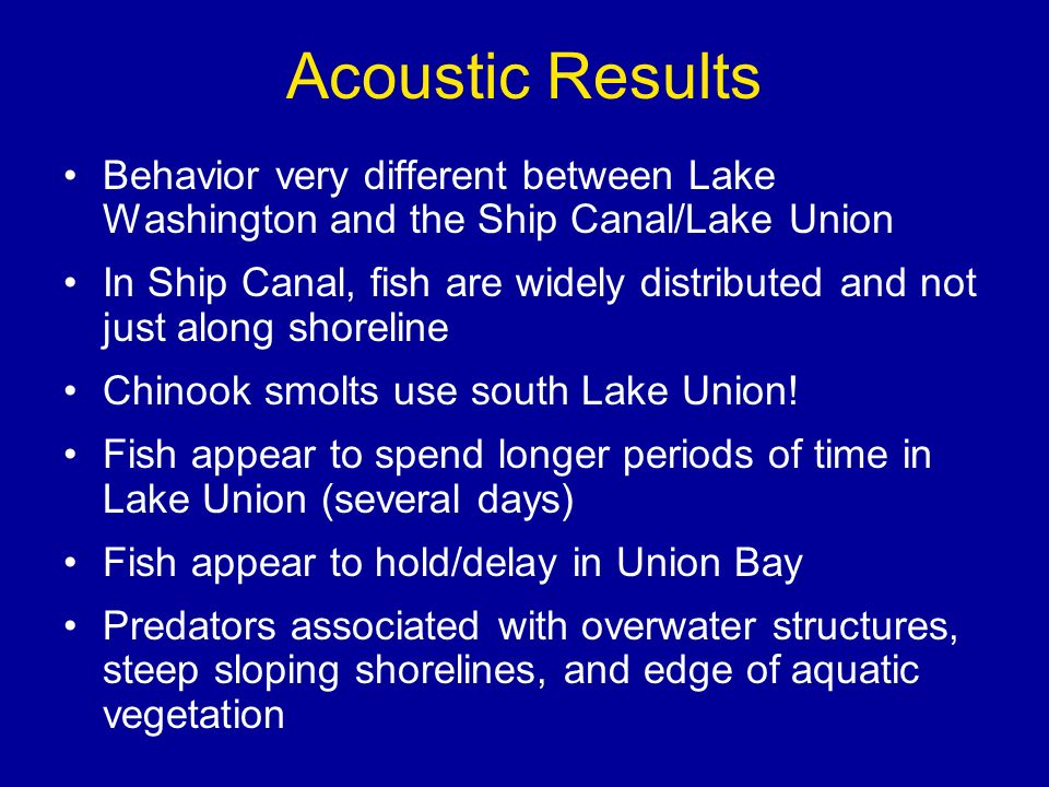 Acoustic Results Behavior very different between Lake Washington and the Ship Canal/Lake Union In Ship Canal, fish are widely distributed and not just along shoreline Chinook smolts use south Lake Union.