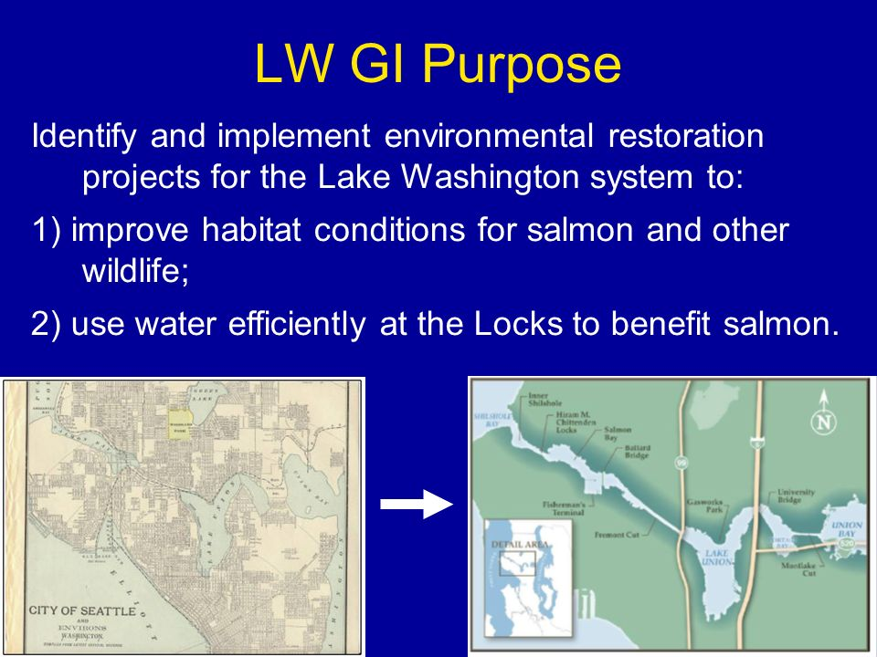 History of the GI 1997: LW GI began Seattle and King County local sponsors Reconnaissance 1998: Reconnaissance report 905(b) Feasibility Split LW GI into 2 phases: 1999: Chinook listed 2006: Discontinued Phase 1 = King Co.