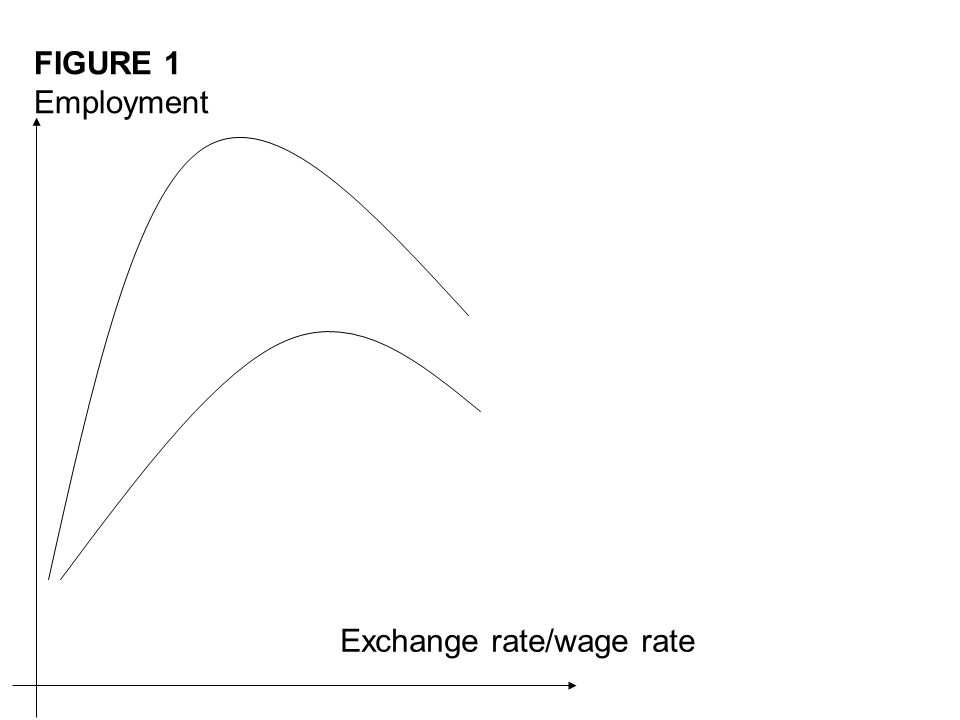 FIGURE 1 Employment Exchange rate/wage rate