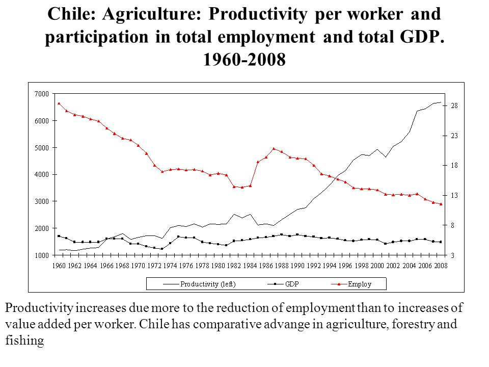 Chile: Agriculture: Productivity per worker and participation in total employment and total GDP.