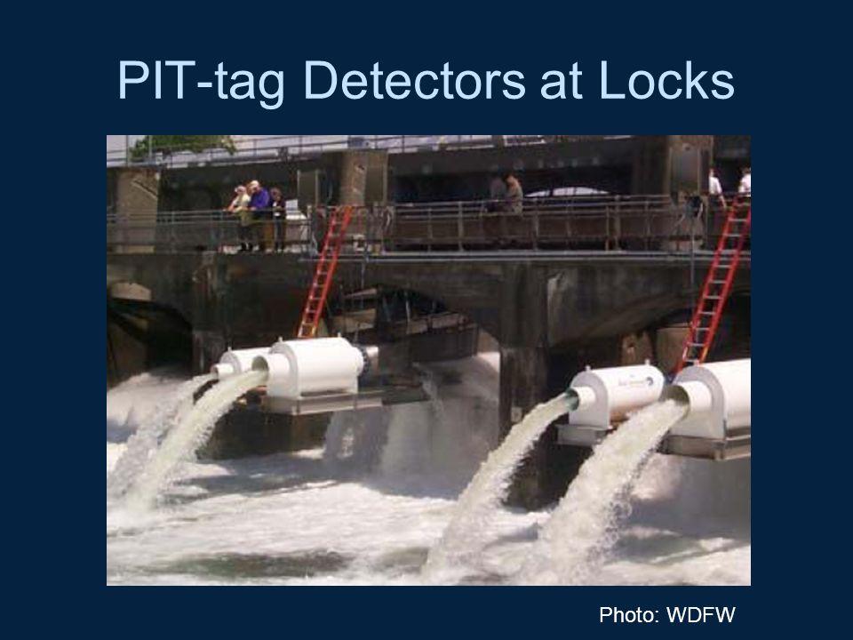 PIT-tag Detectors at Locks Photo: WDFW