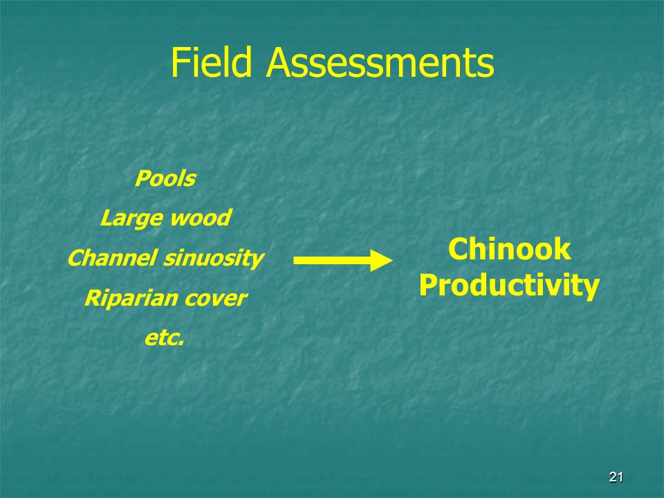21 Pools Large wood Channel sinuosity Riparian cover etc. Chinook Productivity Field Assessments
