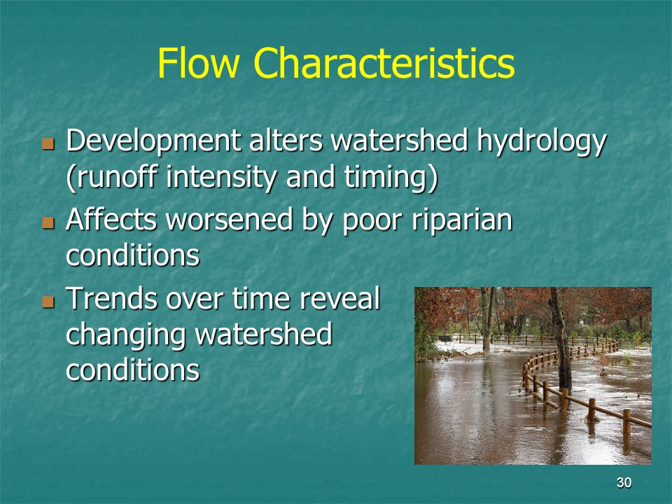 30 Development alters watershed hydrology (runoff intensity and timing) Development alters watershed hydrology (runoff intensity and timing) Affects w