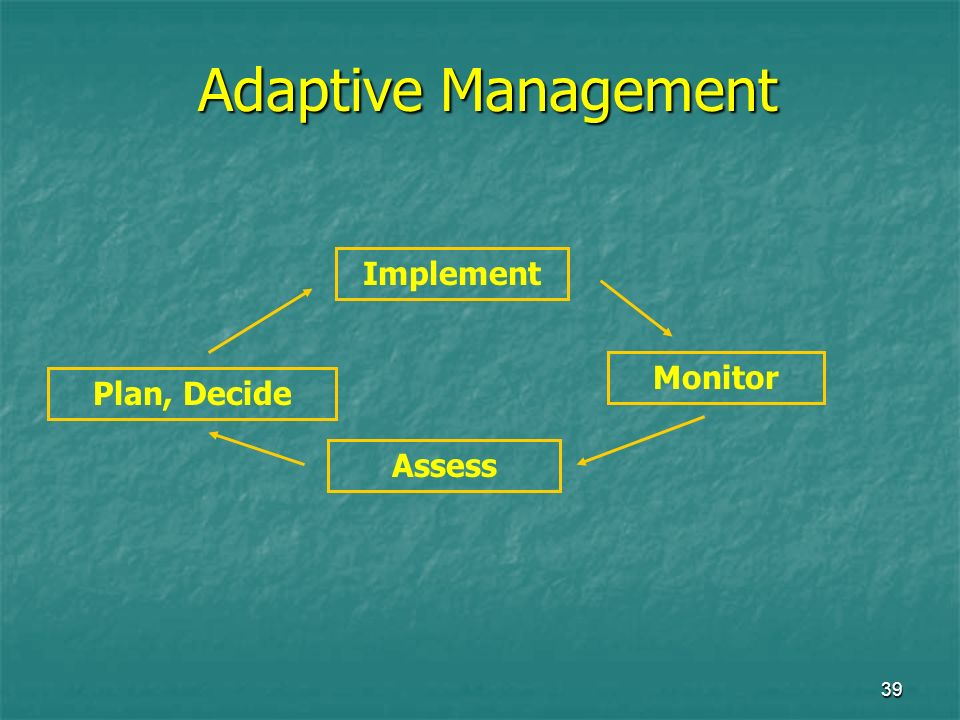 39 Adaptive Management Plan, Decide Implement Monitor Assess