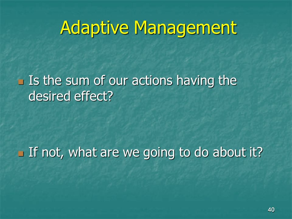 40 Adaptive Management Is the sum of our actions having the desired effect? Is the sum of our actions having the desired effect? If not, what are we g