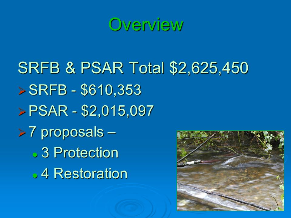 SRFB/PSAR Application Review Process How well does the project meet: How well does the project meet: WRIA 8 Conservation Strategy WRIA 8 Conservation Strategy 3-Year Work Program 3-Year Work Program with NOAA Technical Recovery Team (TRT) Reviewwith NOAA Technical Recovery Team (TRT) Review Cedar, Migratory, Naturally-spawning Sammamish, and Sammamish population areas Cedar, Migratory, Naturally-spawning Sammamish, and Sammamish population areas SRFB Manual 18 – Policies and Project Selection SRFB Manual 18 – Policies and Project Selection with SRFB Review Panel Member Reviewwith SRFB Review Panel Member Review Is the project well-thought out & cost effective.