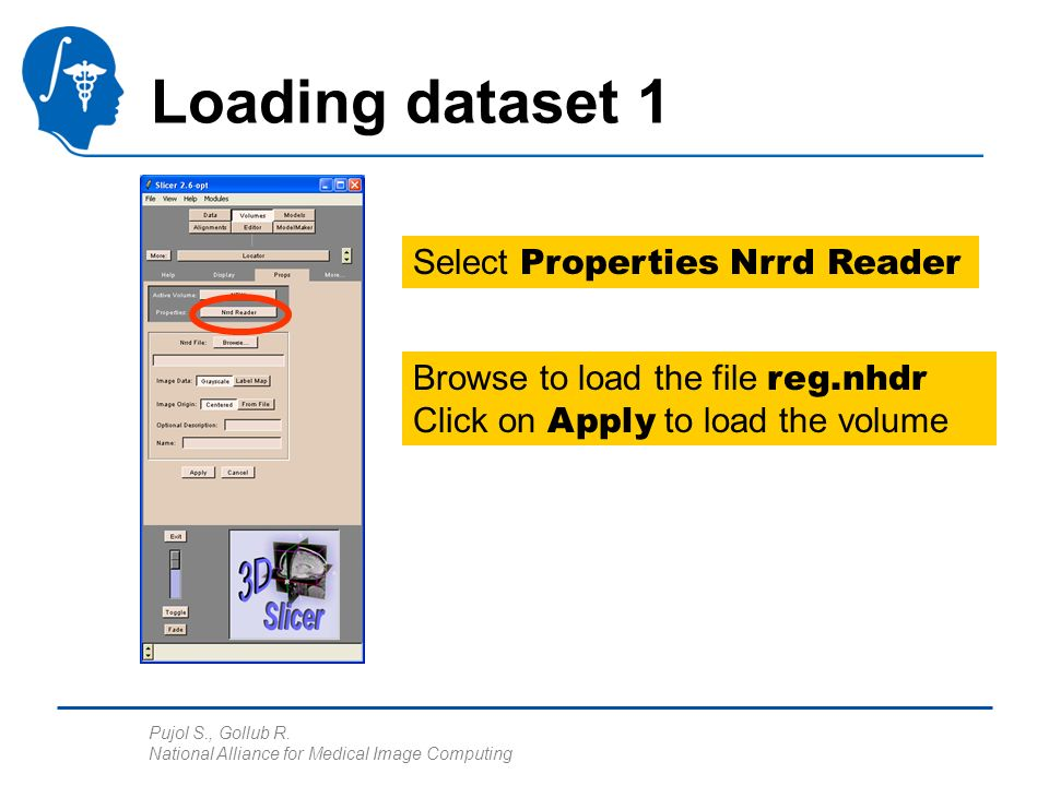 Pujol S., Gollub R. National Alliance for Medical Image Computing Loading dataset 1 Select Properties Nrrd Reader Browse to load the file reg.nhdr Cli