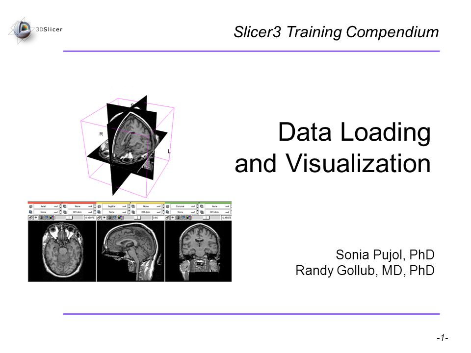 Pujol S, Gollub R -1- National Alliance for Medical Image Computing Data Loading and Visualization Sonia Pujol, PhD Randy Gollub, MD, PhD Slicer3 Training Compendium