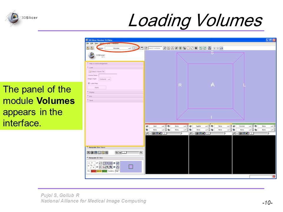 Pujol S, Gollub R -10- National Alliance for Medical Image Computing Loading Volumes The panel of the module Volumes appears in the interface.