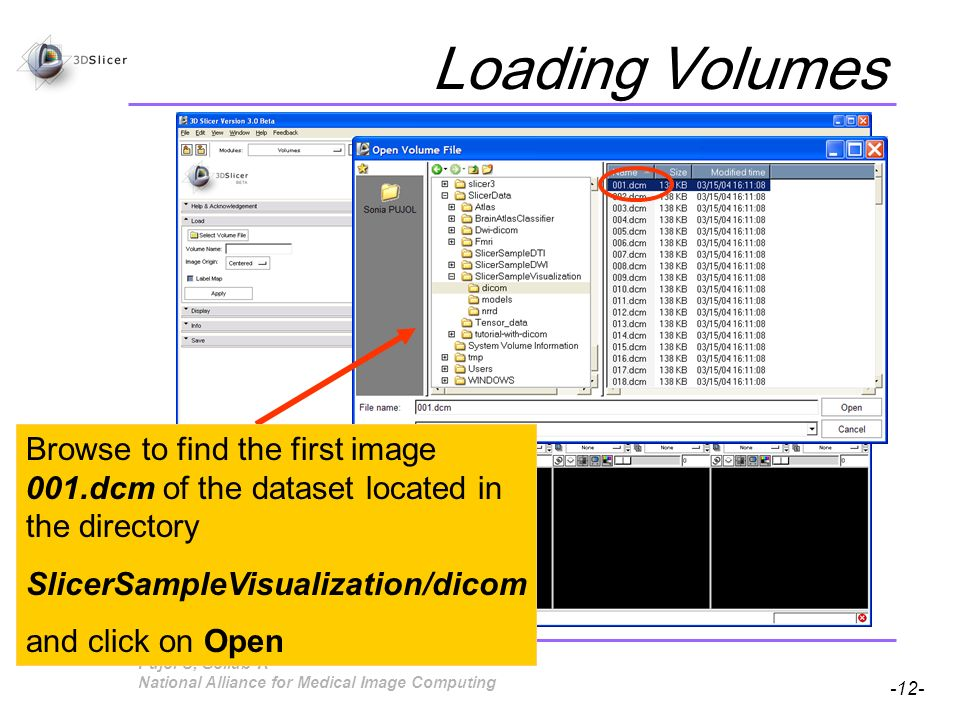 Pujol S, Gollub R -12- National Alliance for Medical Image Computing Loading Volumes Browse to find the first image 001.dcm of the dataset located in the directory SlicerSampleVisualization/dicom and click on Open