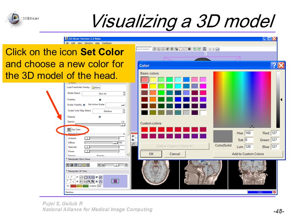 Pujol S, Gollub R -48- National Alliance for Medical Image Computing Visualizing a 3D model Click on the icon Set Color and choose a new color for the 3D model of the head.