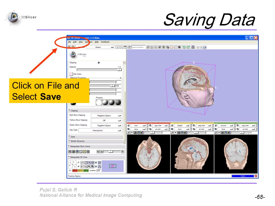Pujol S, Gollub R -68- National Alliance for Medical Image Computing Saving Data Click on File and Select Save