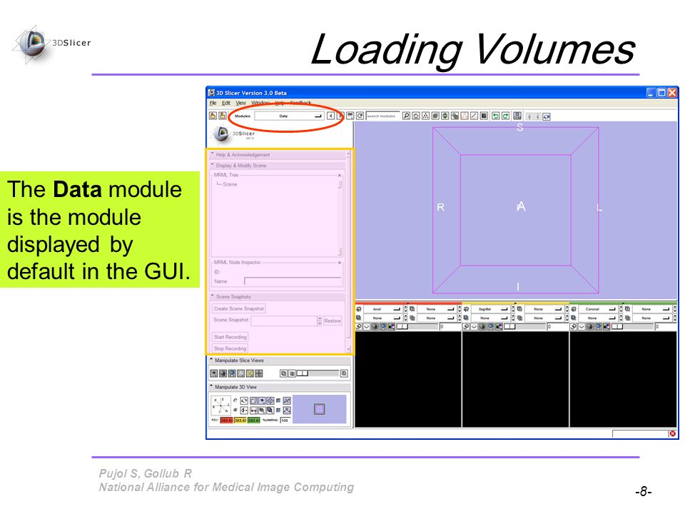 Pujol S, Gollub R -8- National Alliance for Medical Image Computing Loading Volumes The Data module is the module displayed by default in the GUI.