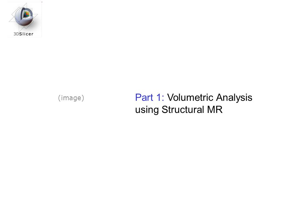 Part 1: Volumetric Analysis using Structural MR (image)