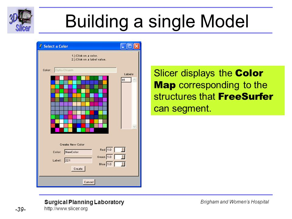 Surgical Planning Laboratory http://www.slicer.org -39- Brigham and Womens Hospital Building a single Model Slicer displays the Color Map correspondin