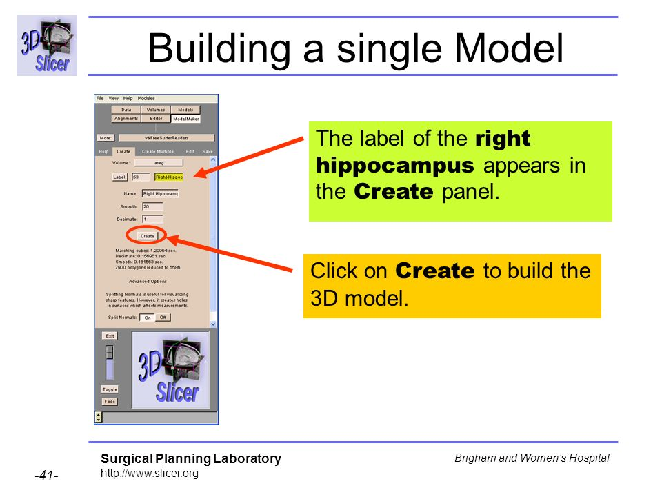 Surgical Planning Laboratory http://www.slicer.org -41- Brigham and Womens Hospital Building a single Model The label of the right hippocampus appears
