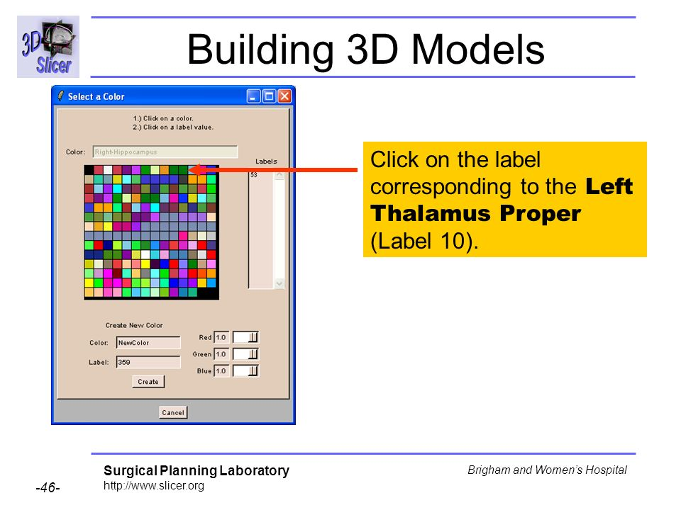 Surgical Planning Laboratory http://www.slicer.org -46- Brigham and Womens Hospital Building 3D Models Click on the label corresponding to the Left Th